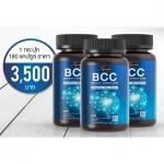 อาหารเสริม บำรุงสมองและระบบประสาท Auswelllife BCC (Brain & Cardio Care) with Squalene & Ginkgo 60 แคปซูล 3 กระปุก