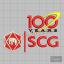 บล็อคปัก SCG 100 ปี
